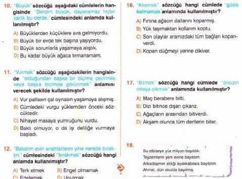altınbilgi 33 Soruluk 6. Sınıf Tarama Testi