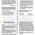 LGS Deneme Sınavı 3