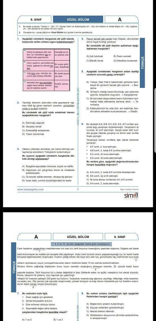 LGS Deneme Sınavı