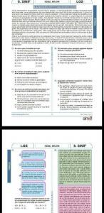 Screenshot_20180427-212117-432x888-146x300 Hatay MEM - LGS Deneme Sınavı 3