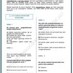 lgs deneme sınavı (5)