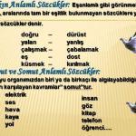Türkçe Kelimede Anlam Sunusu3
