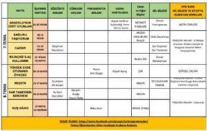 türkçe ders planı2