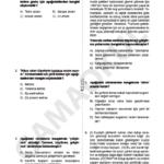 türkçe seviye tespit sınavı (1)