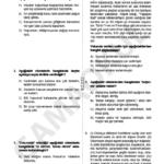 türkçe seviye tespit sınavı (2)