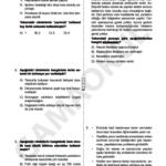 türkçe seviye tespit sınavı (4)