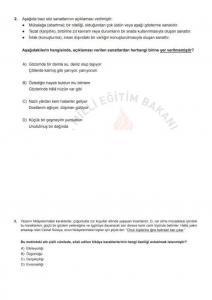 Baskıya Uygun Türkçe Soruları - Aralık LGS Örnek Sorular_2