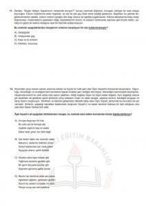 Baskıya Uygun Türkçe Soruları - Aralık LGS Örnek Sorular_6