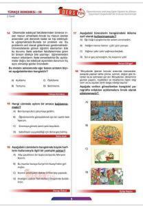 Türkçe Deneme Sınavı (3)