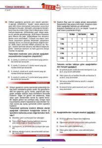 Türkçe Deneme Sınavı (4)