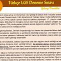LGS Deneme Sınavı (Şubat 2019) – Yılmaz DEMİRBAŞ