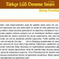 LGS Deneme Sınavı – 2. Deneme (Şubat 2019) – Yılmaz DEMİRBAŞ