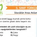 5. Sınıf Sözcükler Arası Anlam İlişkileri Testi