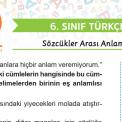 6. Sınıf Sözcükler Arası Anlam İlişkileri Testi