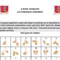 A-Kare Yayınları Lgs Paragraf Denemesi